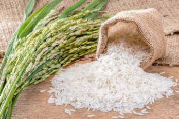 How to know some rice food in Vietnam